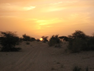 Sunset inSahara