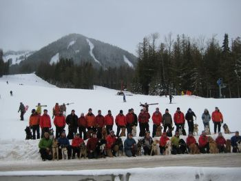 All of Canada's avalanche dogs & trainers