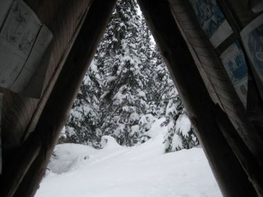 View from Outhouse!