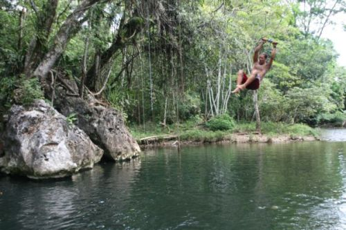 Jane´s Tarzan