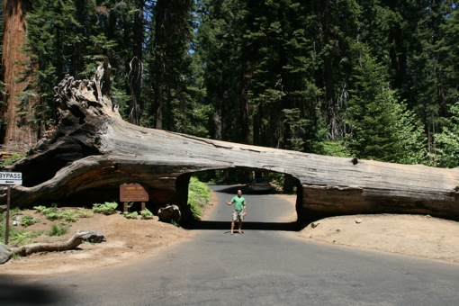 kings canyon national pk chat sites Visit sequoia and kings canyon national park best things to do are: grant grove, congress trail, and trail of 100 giants see kid friendly attractions travel jul 20 - jul 22.